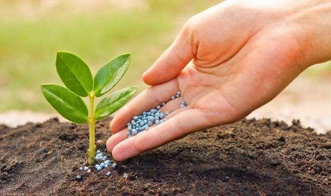 Удобрения / гербициды. Фото