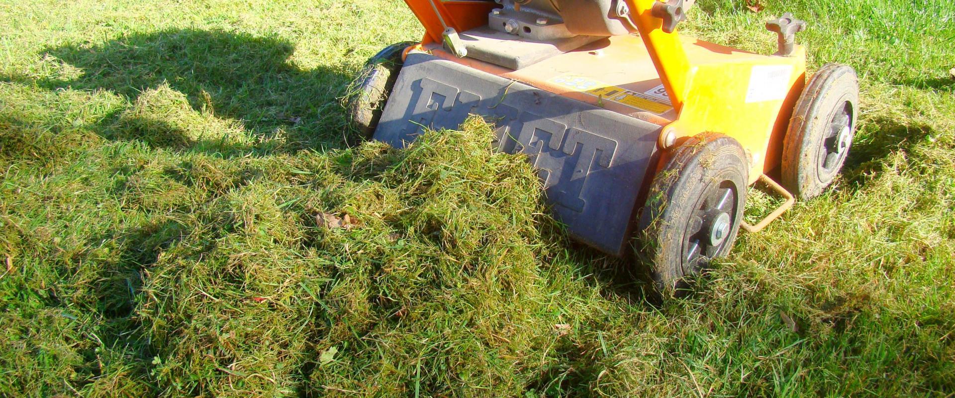 Скарификация газона. Фото.
